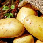 H-425-kartoffeln